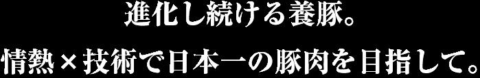 進化し続ける養豚。情熱×技術で日本一の豚肉を目指して。
